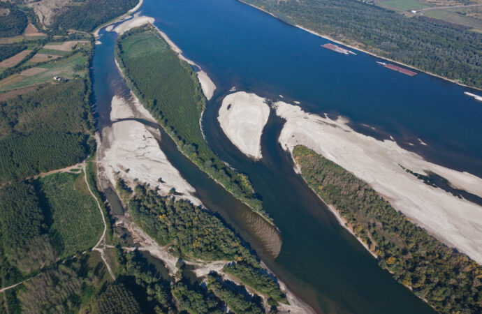 Wild Islands – Protecting Danube areas across borders