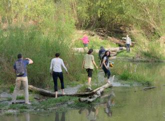 In Aktion für Umwelt und Natur
